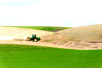 Palouse Tractor in Field