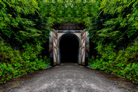 Snoqualmie Tunnel - Mirror Image